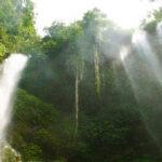 Promotion voyage à Bali
