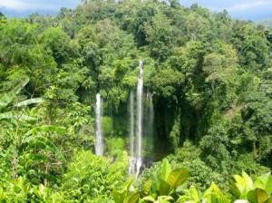 Découvrez de magnifiques chute d'eau avec Lune de Miel Bali