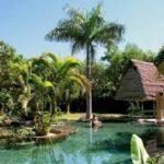 pisicne paysagère d'un hôtel à Bali