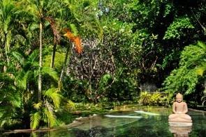 jardin tropical d'un hôtel