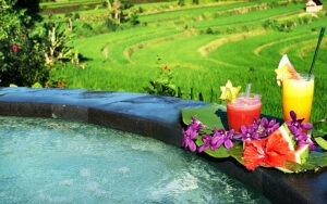 piscine donnant sur les rizières