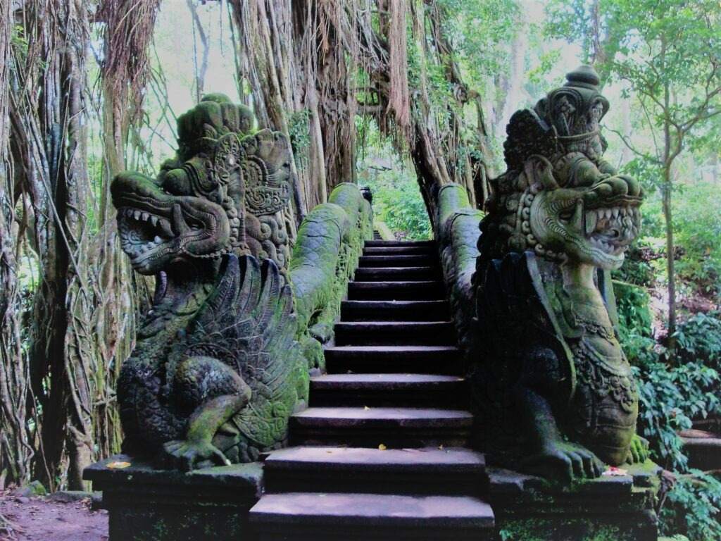 forêt des singes, Ubud, Bali, Indonésie