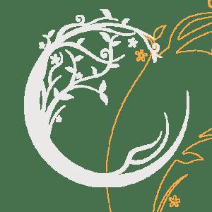 logo du site Lune de Miel Bali