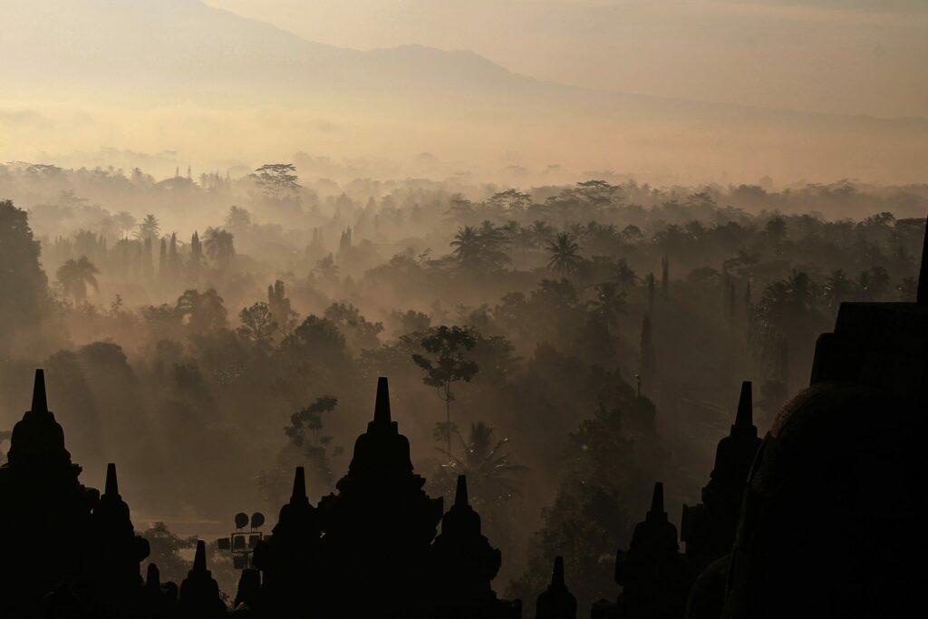 vue jungle, Borobudur, Java, Indonésie