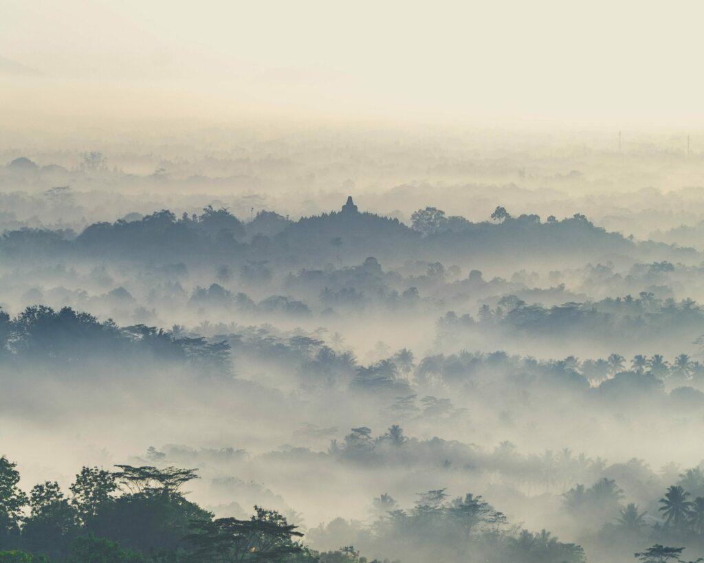 vue jungle et borobudur, Java, Indonésie