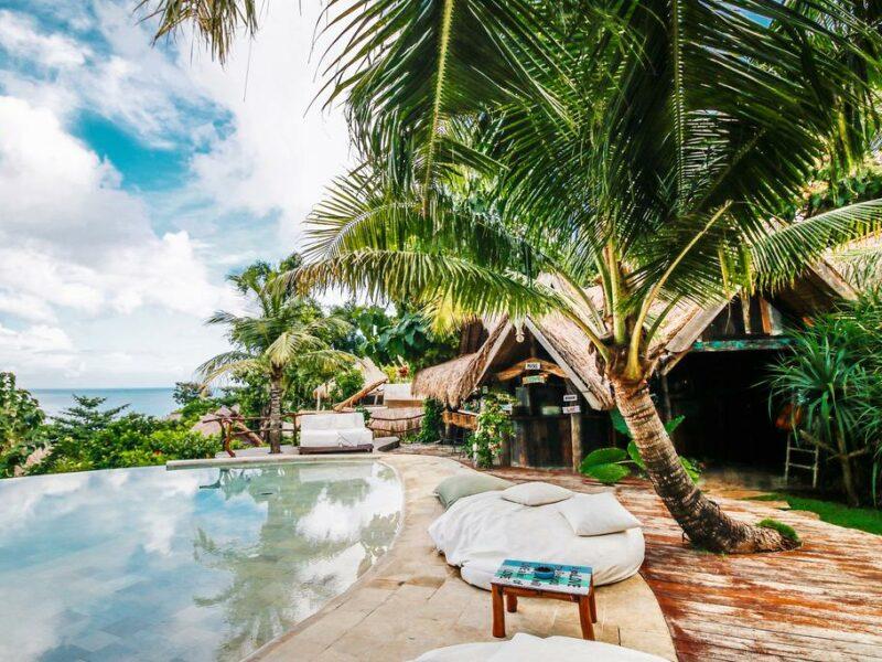 petite piscine tropicale
