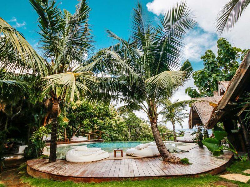 petite piscine sous les palmiers