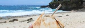 noix de coco devant la plage